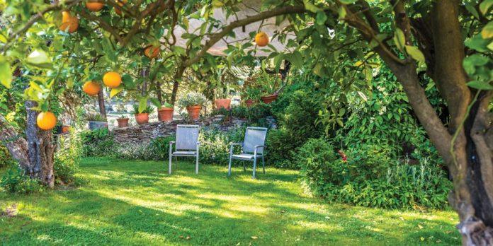 Best Garden Makeovers