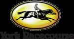 York Racecourse discount code